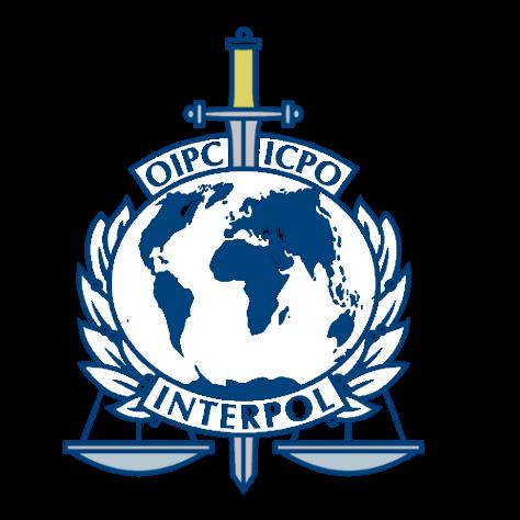 INTERPOL VECTOR BASIC 1